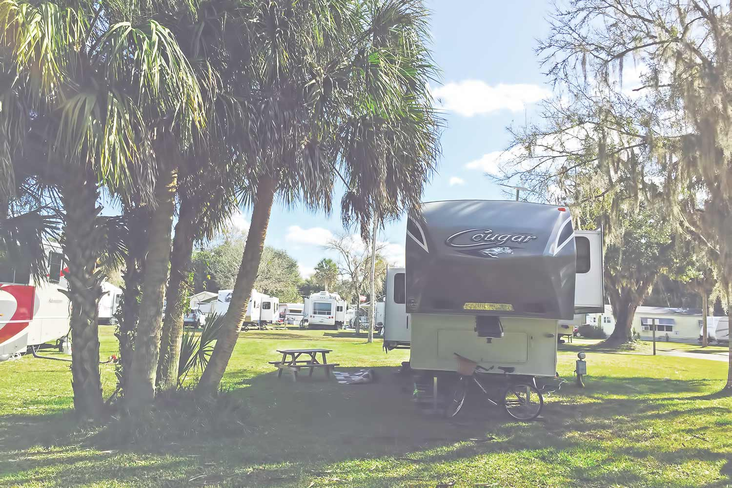 Welcome To River Palm RV Resort Park Near Tampa Florida
